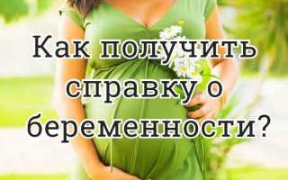 Как получить справку о беременности?